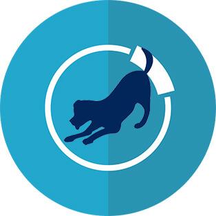 Terapia asistida por perros TAP