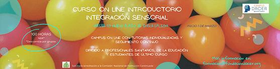 Imagen de curso de introducción integracion sensorial
