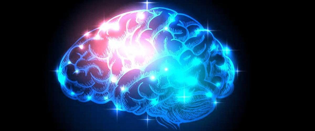cerebro y dolor