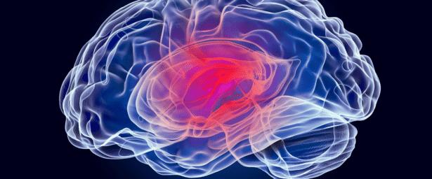 El abordaje multidisciplinar en la conmoción cerebral